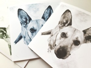 Carolina Dog Set of Three Art Greeting Cards