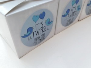 Twin boys baby shower favour stickers, twin boy stickers, twin boy baby shower, blue baby shower labels, baby shower favour labels, 047