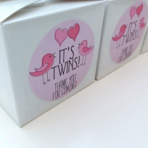 Twin girls baby shower favour stickers, twin girl stickers, twin girl baby shower, pink baby shower labels, baby shower favour labels, 046