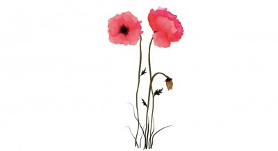 Temporary-Tattoo-Watercolor-Poppies1